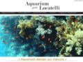 Aquarium, création  d'aquarium   colonne
